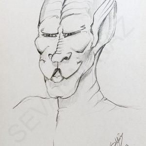 Seval Minaz Karakter Serisi (55)
